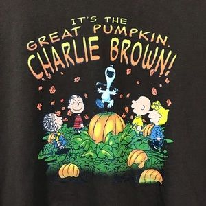 🍂PEANUTS 🍂brand Great Pumpkin T-shirt